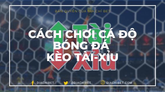 Cách chơi cá độ bóng đá kèo tài xỉu từ Diachibet Banner Logo